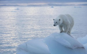The fiddling with temperature data is the biggest science scandal ever